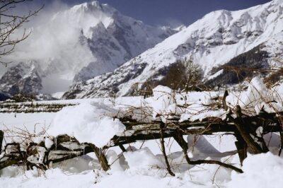 Vigne sotto la neve a Morgex